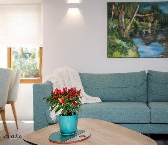 עיצוב בית על פי הפנג שואי, תקריב לסלון, ענבל קרקו עיצוב פנים ופנג שואי